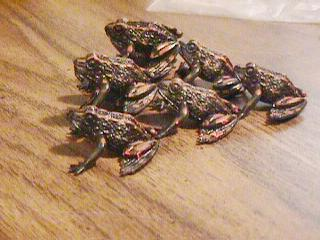 http://www.ludism.org/scpix/20030315/06_ordered_frogs.jpg